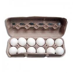 Huevos Súper 12 Unidades